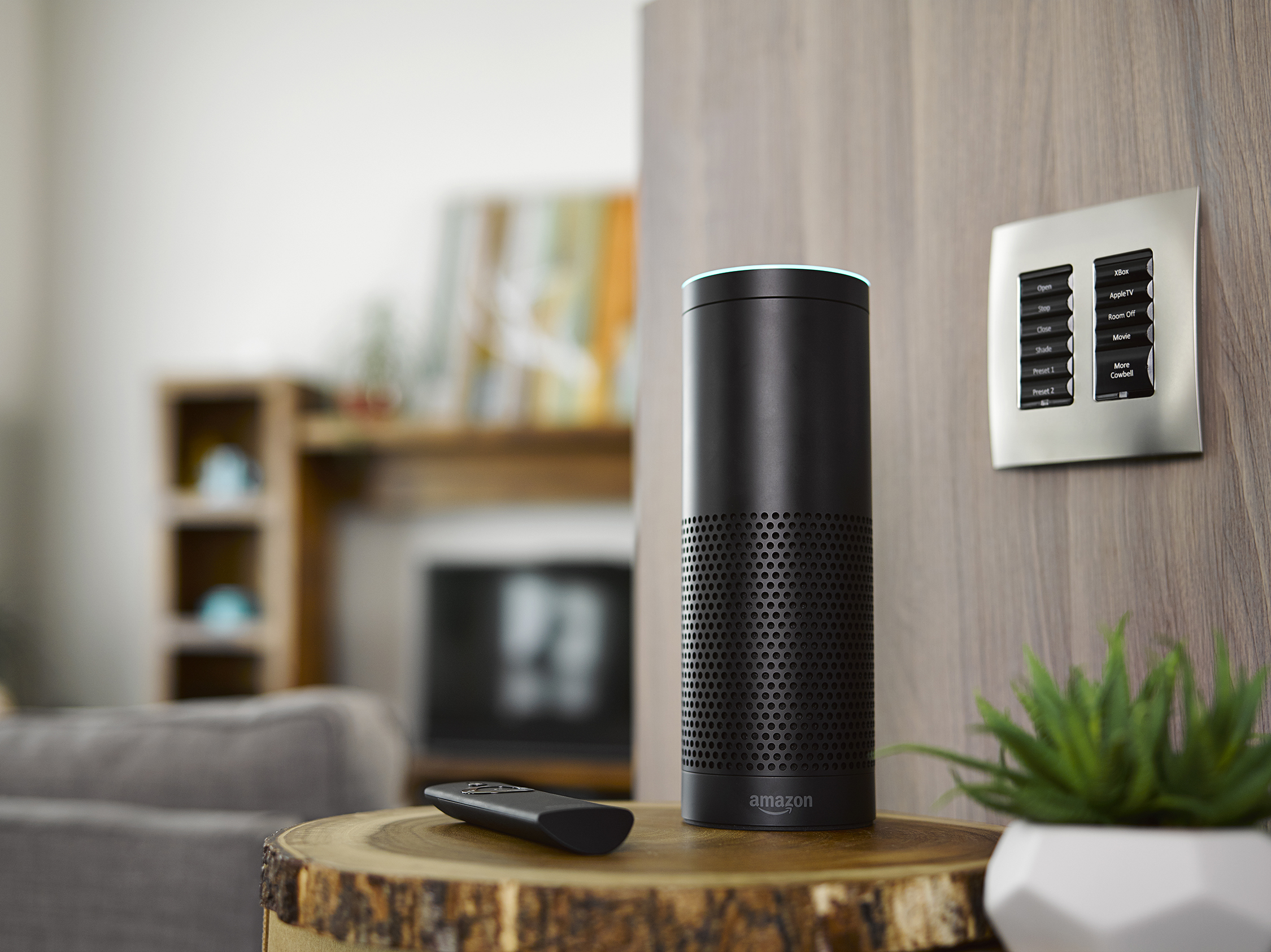 Keep Your Hands to Yourself!: amazon alexa, nurture, voice control,