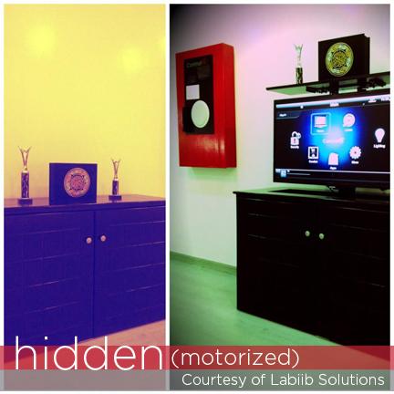 Control4 hidden television